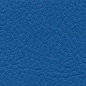 bleu IN36