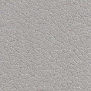 gris clair EK7