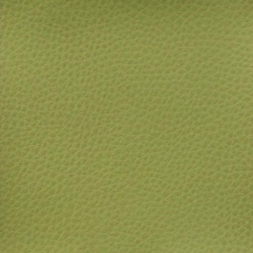 vert clair olive Z21