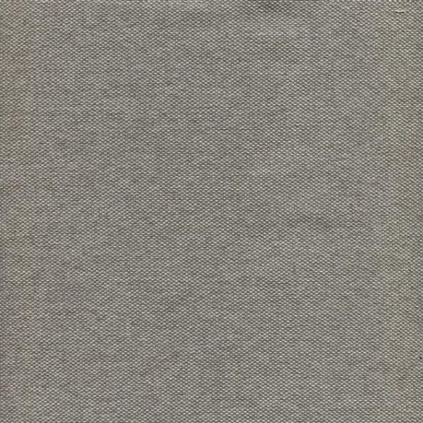 Tissu uni à structure fine BA06 gris clair