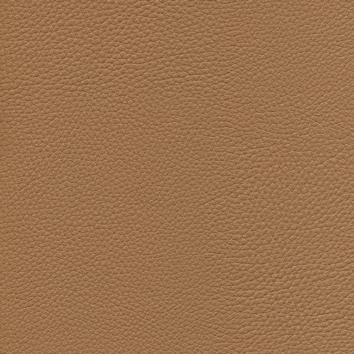 Kunstleder für hohe Ansprüche KPF038 Cappuccino